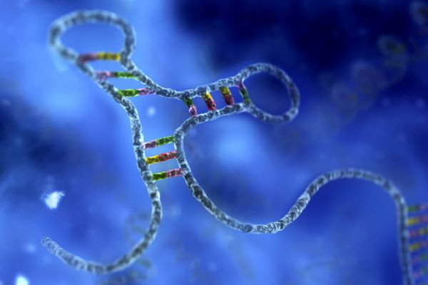 RNA: The Future Generation of Therapeutics